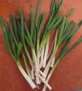 Trimmed green garlic