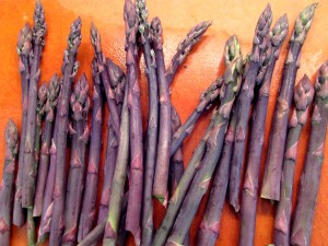 Purple asparagus stalks