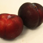 Plum tart: whole plums