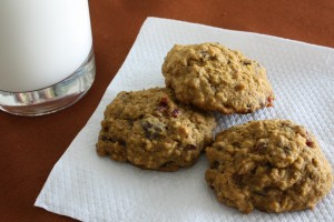 Pumpkin Cookies08