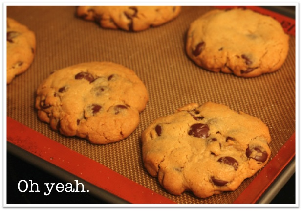 The Most Amazing Chocolate Chip Cookies Chocolate Chip Cookies